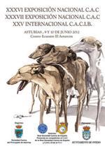 Imagen de portada de catálogo de las exposiciones de Oviedo 2012