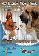 Cartel de las Exposiciones de Valladolid 2014