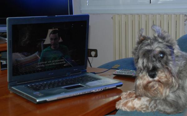 Erte Da Volvoreta watching The Big Bang Theory